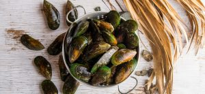 green-lipped-mussels-newzealand