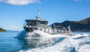 karaka-boat-aroma